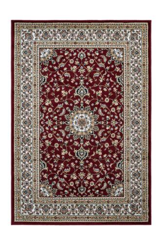 Orientalischer Teppich Ornamente Schnörkel Wohnzimmer Rot Beige 200x290cm