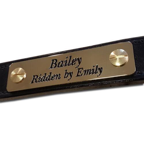 Spiegel Messing Poliert Halfter Namensschild Reitsport Stift Etikette 8 Größe