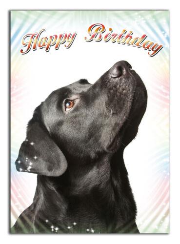 298 Black labrador dog Mum Dad Grandma friend Daughter nanny son brother sister