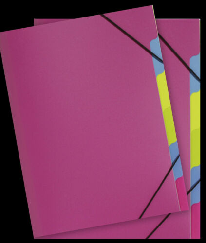 PAGNA 5 Ordnungsmappen Sammelmappe School dunkel rosa pink rose 5 Fächer Neu