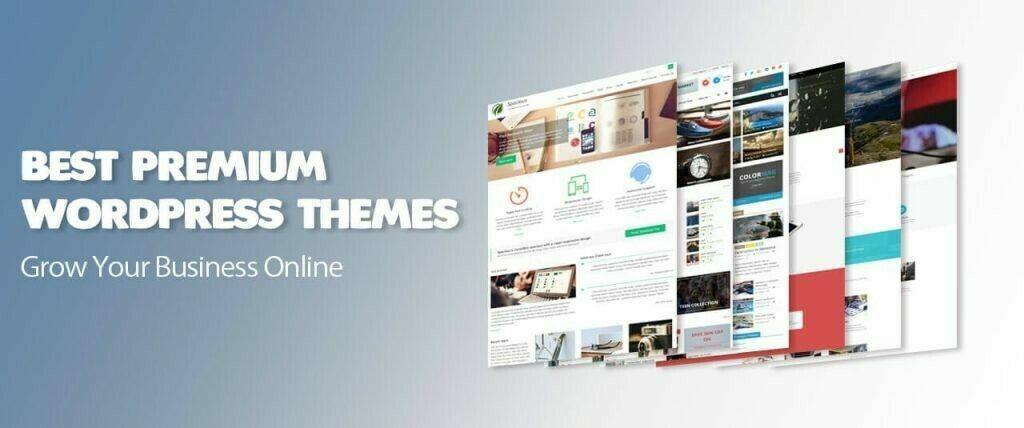 600+ Premium WordPress Themes, Plus WP Video Training and Mega-pack Clip Arts 2