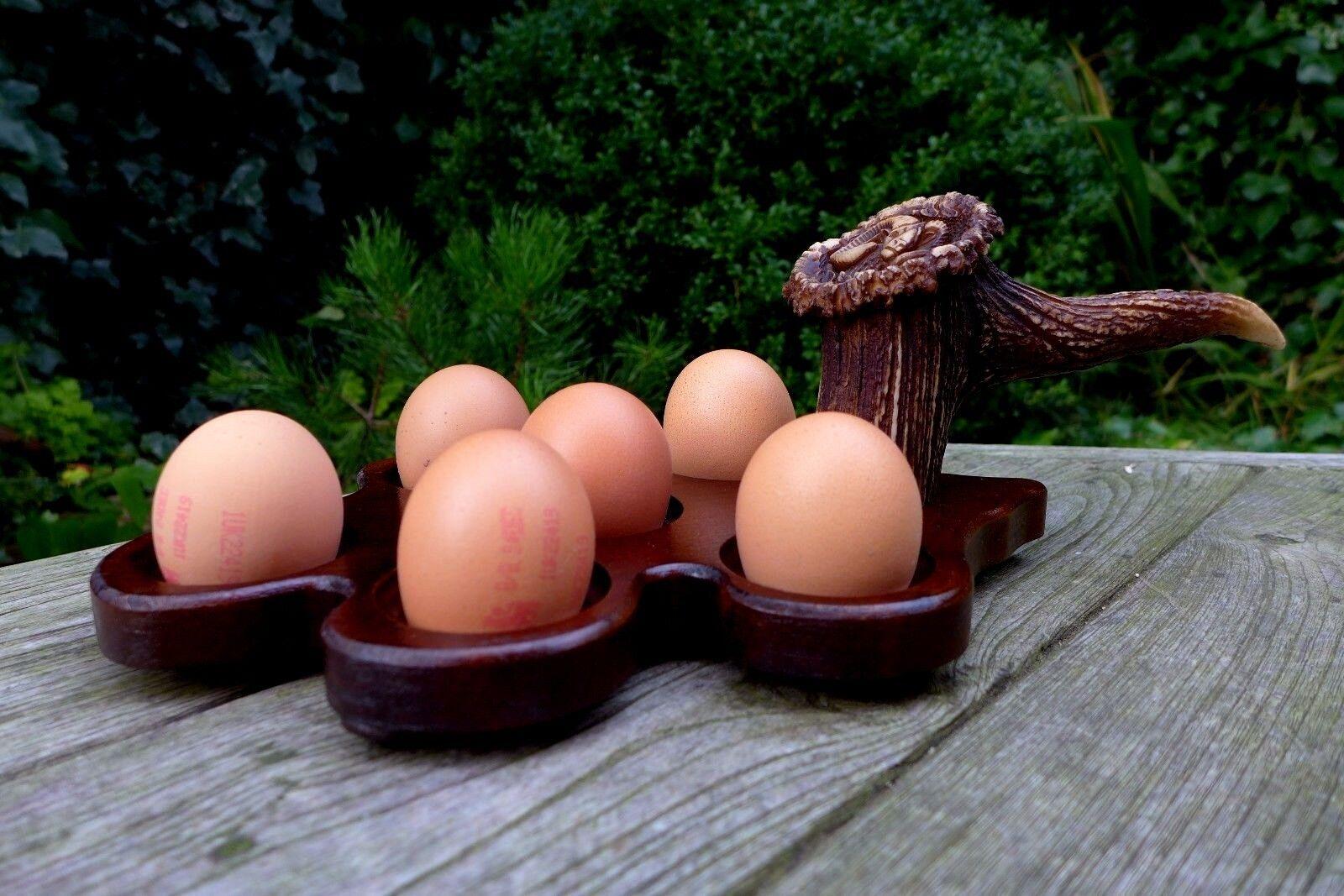 Egg Holder Handmade & Handcrafted Support pour 6 oeufs Une copie du cerf Poignée