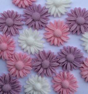 18 Pretty lilac purple white daisies Edible Sugar paste cake toppers Wedding