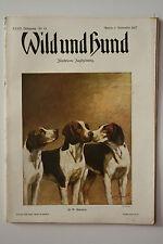 Deutsche Jagdzeitung Wild und Hund Nr. 44 - 1927 !!