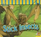 Stick Insects by Aaron Carr (Paperback / softback, 2014)