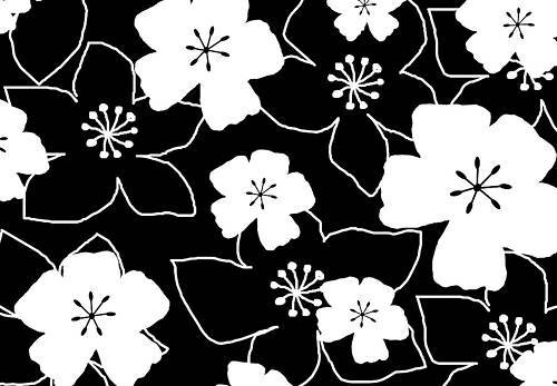 Modern papier peint floral Boîte Toile Art Noir Blanc A1