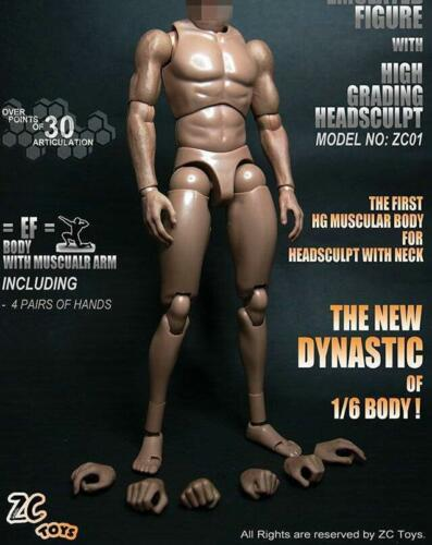"1//6 ZC Toys 12/"" Muscular Figure Body For Hot Toys Head Sculpt BW//O Neck"