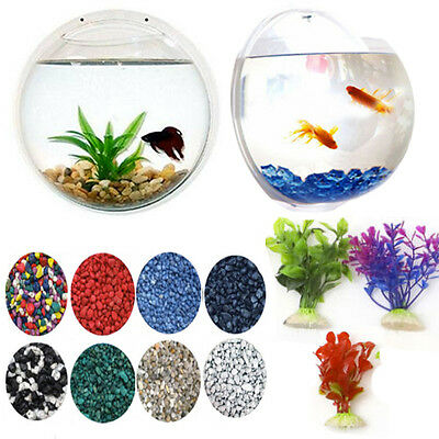 Wall Hanging Fish Bowl - Plant Decoration Bubble Tank - Aquarium Mounted Bowl