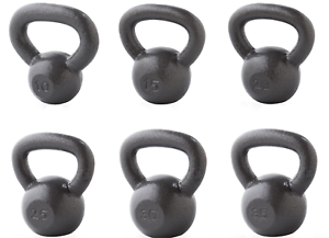 Kettlebell Grey Cast Iron Weider FAST SHIPPING 10 15 25 30 /& 35 lb SINGLE 20