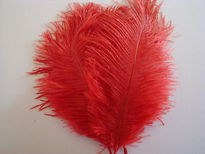 """10 RED OSTRICH FEATHERS 13-15""""L GRADE *B*"""
