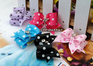 10 Crystal DOT Shih Tzu Dog grooming bows and Poodle Puppy Bow Maltese Yorkie