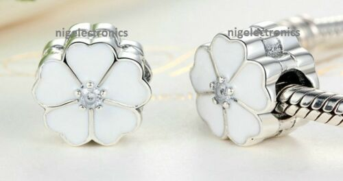 Authentic925 Sterling Silver Do Enjoy Charms fit Euro// Reflexions Charm Bracelet