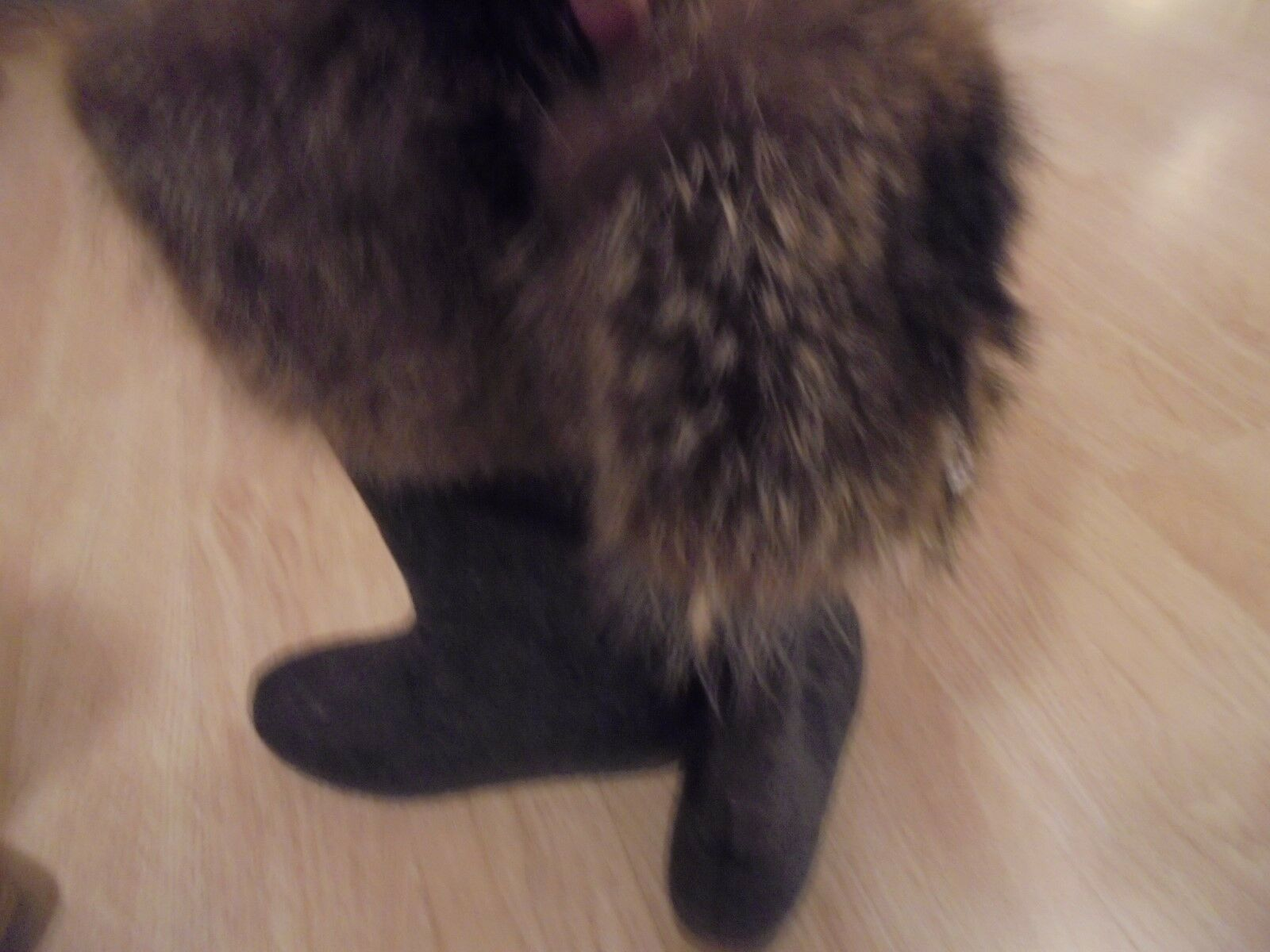 Womans Grau 100% Wool Stiefel With Raccoon Added Raccoon With Fur Giving Rustic Unique Look c973cb