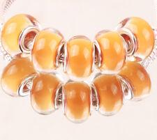 5pcs SILVER MURANO bead LAMMWORK fit EuroMean Charm Bracelet A#44