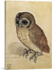 ARTCANVAS-The-Little-Owl-1506-Canvas-Art-Print-by-Albrecht-Durer