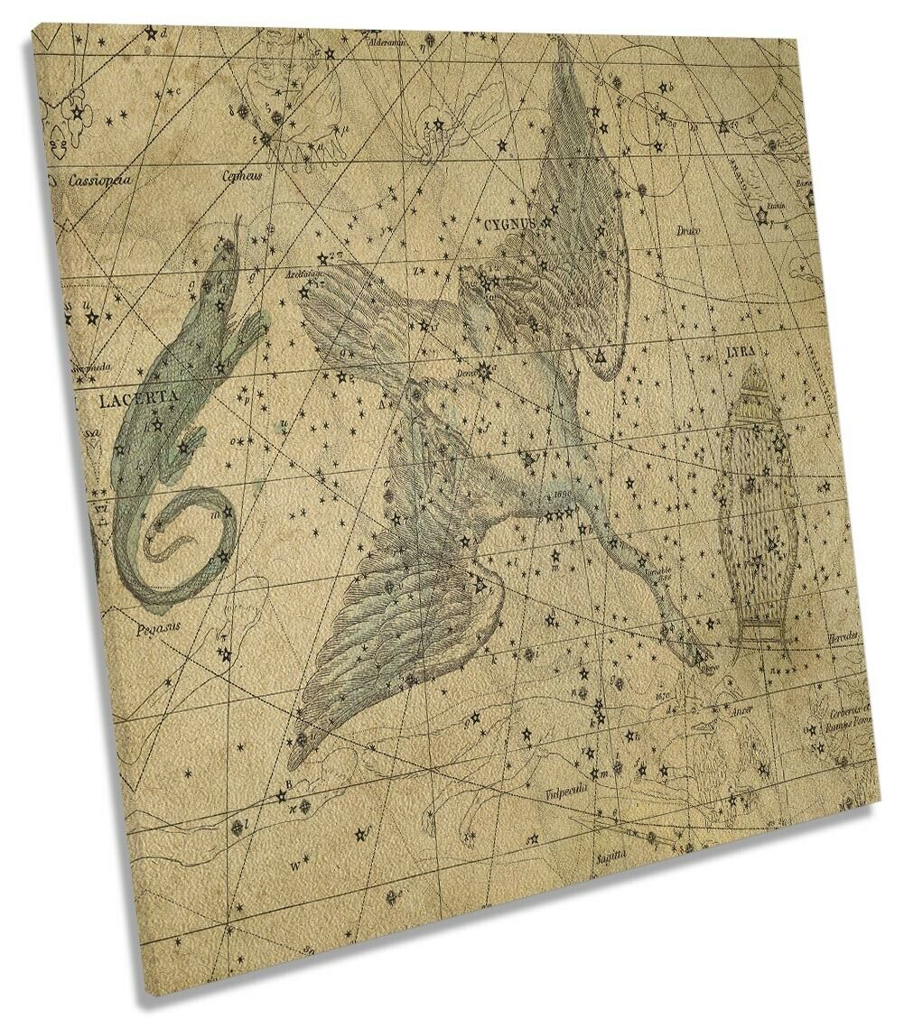 Star Sign Celestial Atlas 14 Picture CANVAS WALL ART Square Print