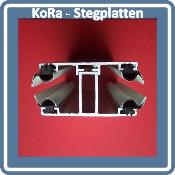 Alu-Komplett Verlegeprofil,Mitte,16 mm Stegplatte,schwarze Dichtung,12,90,- lfdm
