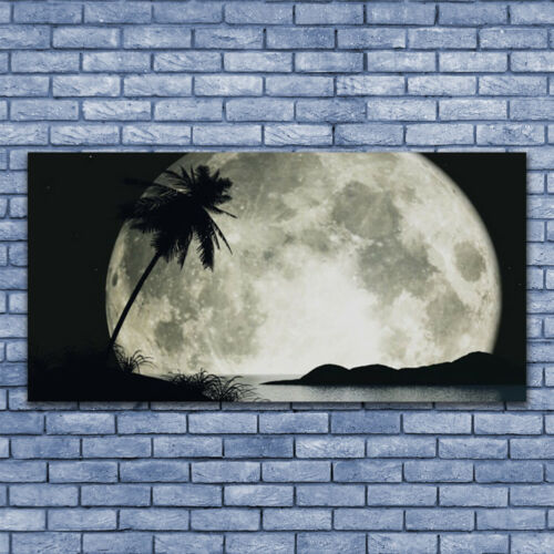Acrylglasbilder Wandbilder Druck 140x70 Nacht Mond Palme Landschaft