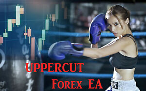 Forex ea with low max consecutive losses