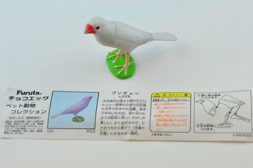 Furuta japan pet animal part.1 No 05