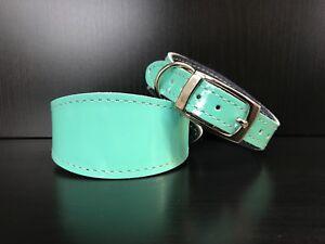 XS-Leather-Dog-Collar-FELT-LINED-Greyhound-Lurcher-Whippet-Saluki-MINT-GLOSS