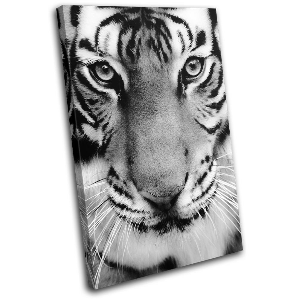 Tiger Face Zoo Eyes Home Gift B&W Animals SINGLE TOILE murale ART Photo Print