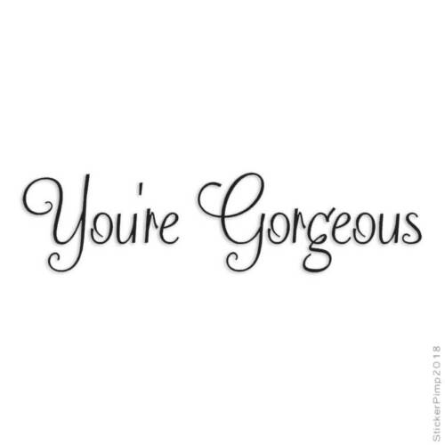Size #3780 You/'re Gorgeous Decal Sticker Choose Color
