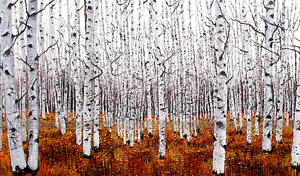 3D Bare Trees Trunks 92 Wall Paper wall Print Decal Wall Deco Wall Indoor Murals