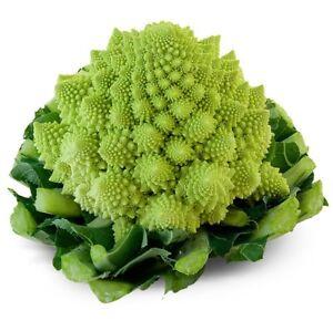 200 Graines de Chou Romanesco Brassica Oleracea var. Botrytis Cauliflower  seeds | eBay