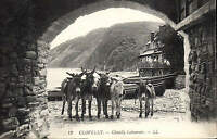 Clovelly. Clovelly Labourers # 12 by LL / Levy. Black & White. Donkeys.