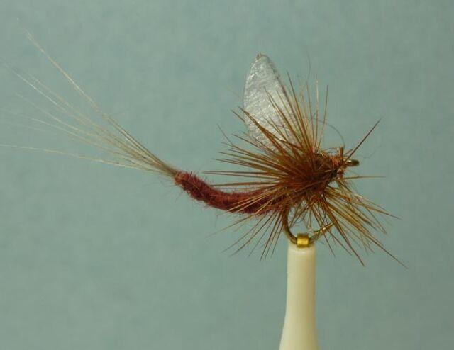 PMD #14-16-18, PN1615 12 Artflies Extended Body Dry Flies Pale Morning Dun