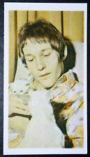 Mike D'Abo   Manfred Mann     Vintage  Photo Card # VGC
