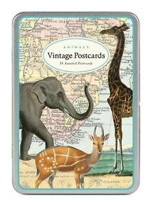 Cavallini-amp-Co-Animals-Vintage-Postcard-Set