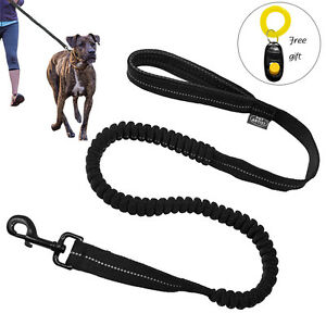 Black-Reflective-Nylon-Dog-Leads-Bungee-Shock-Leash-with-Free-Clicker-Training