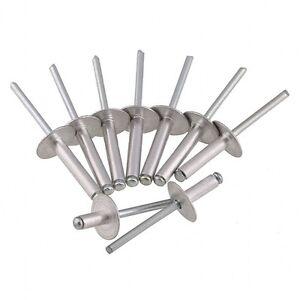 POP Rivets Large Flange ALL Steel Qty-1000 8-8LF 1//4 x 1//2 Gap .376 - .500