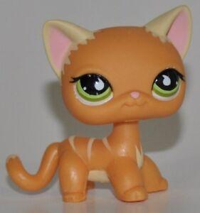 Pet Shop Cat Rare Short Hair Kitty Lps Toy 525 Orange Kitten Green Eyes 523156895530 Ebay