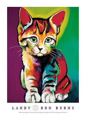 CAT KITTEN - ART PRINT POSTER - Landy by Ron Burns 24x18