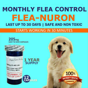 1-Year-Supply-MONTHLY-Flea-Control-For-Dogs-21-45-Lbs-12-Capsules-205-Mg-PB