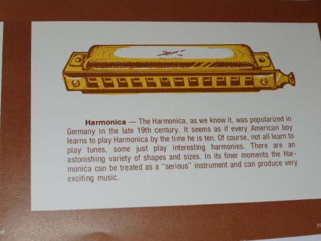 "VINTAGE 1976 /'AMERICAN FOLK INSTRUMENTS/' MUSIC HISTORY CLASSROOM POSTER 17x22/"""