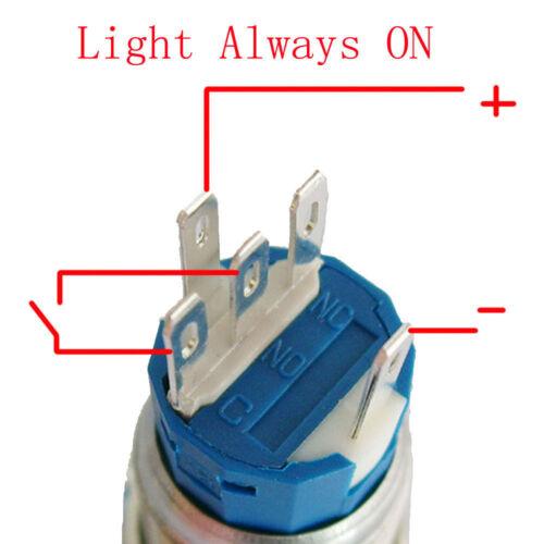 19mm 12V KFZ Auto Schalter Drucktaster Taster LED Beleuchtet Blau Stecker HY