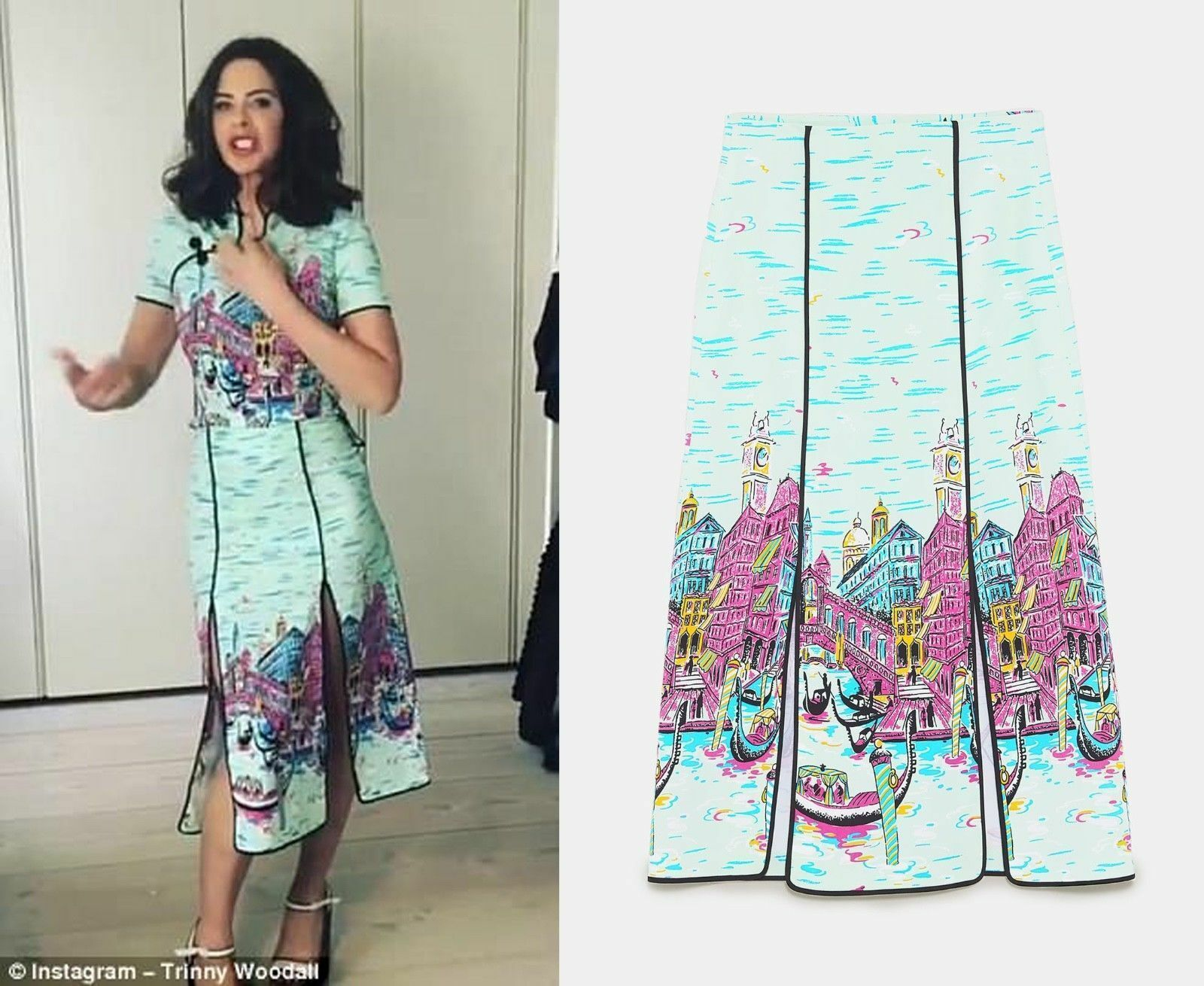 Zara Studio Gondola Print Skirt Size SMALL BNWT