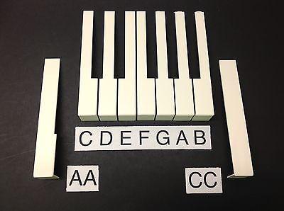 Simulated Medium Ivory pick A,B,C,D,E,F,G,AA,CC Piano Keytop//Key Top