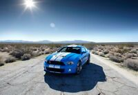 Shelby Gt-500 Poster 24x36 A