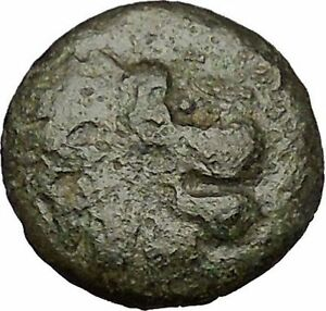 LYSIMACHEIA-in-THRACE-309BC-Lion-Grain-Ear-Authentic-Ancient-Greek-Coin-i52012