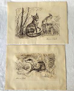 2-Vintage-Signed-Ink-Pen-Paper-Countryside-Art-Drawings-Badger-in-Set-Fox