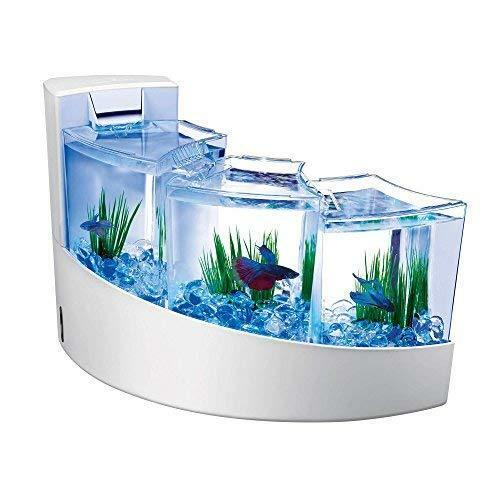 Betta Tank Triple Compartment Display Kit wCascading Waterfall by Aqueon