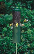 Birds Choice WCSQARROW Squirrel Arrow