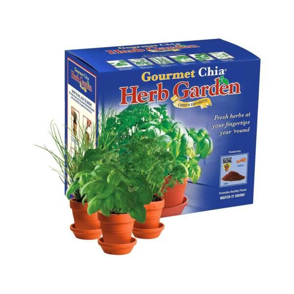 2 Gourmet Chia Herb Garden Chef\'s Favorite Grow Fresh Herbs Indoors ...