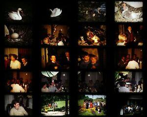 Bobine-Super-8-S8-amateur-scenes-de-famille-repas-communion-cygnes