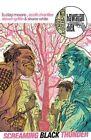 Hawaiian Dick Volume 3: Screaming Black Thunder by Image Comics (Paperback, 2016)